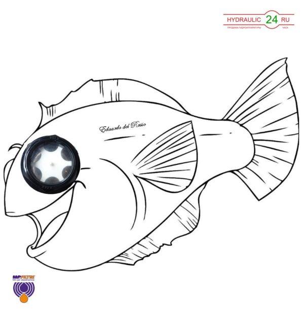 LCP (рыбий глаз)